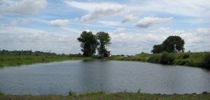 Озеро в Борщовичах Львовской области