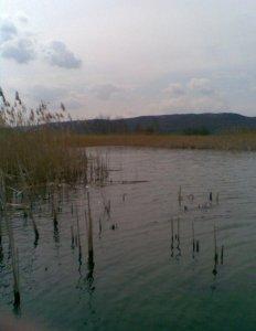 Озеро в Глинске Львовской области