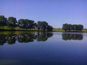 Озеро в Неслухове Львовской области