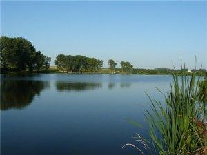 Озеро в селе Сулимов Львовской области