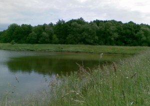 Озеро возле Бабичей Львовской области