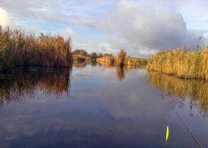 Озеро возле Черного Острова в Львовской области