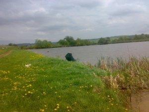 Озеро возле села Кореличи Львовской области