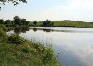 Пруд в Подгорном Львовской области