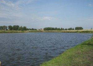 Пруд в Вислобоках Львовской области