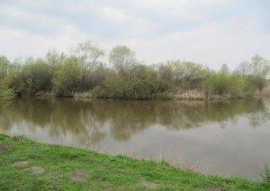 Пруды в Баковцах Львовской области