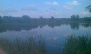 Рыбалка на подстанции возле Жирова Львовской области