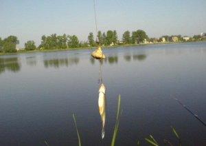 Рыбалка в Кунине Львовской области