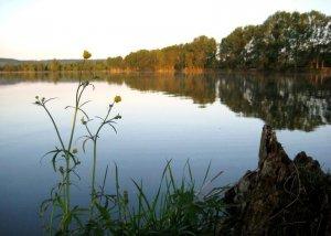 Шевченковское озеро в Золочеве Львовской области