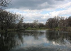 Рыбалка на ставке в с. Краснянка Луганской области-1