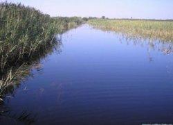 Рыбалка у села Олеско в Львовской области-1