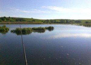 Дикое озеро в Гаях Львовской области
