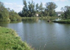 Озеро в Давыдове Львовской области