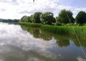 Озеро в Звенигороде Львовской области