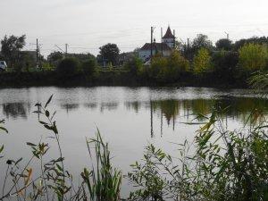 Пруд в Щирце Львовской области