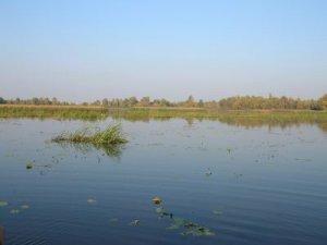 Рыбалка на 5-й шлюзе у с. Процев Киевской области-1