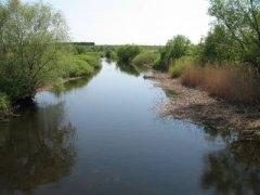 Рыбалка на реке В. Бурлукв с. Мостовое Харьковской области-1