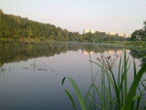 Рыбалка на Совских прудах в Киеве Киевской области-1