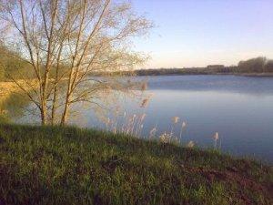Рыбалка на ставке в с. Паращино Поле Кировоградской области-1