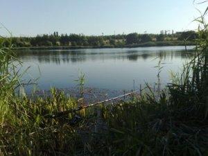 Рыбалка на ставке в с. Полтавка Кировоградской области-1