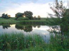 Рыбалка на ставке в с. Вишняковка Луганской области-1