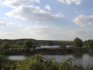 Рыбалка на ставке в с. Захаровка Кировоградской области-1