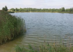 Рыбалка у села Мал. Любаша в Ровенской области-1