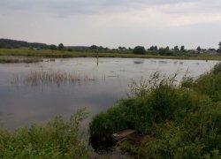 Рыбалка у села Ромашковка в Волынской области-1