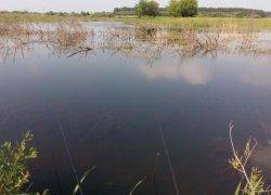 Рыбалка в селе Голышев в Волынской области-1