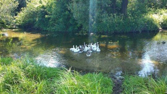 Рыбалка у посёлка Цумань в Волынской области-1