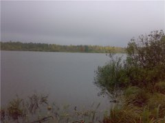 Рыбалка у села Березно в Ровенской области-1