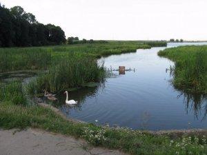 Рыбалка у села Острожец в Ровенской области-1