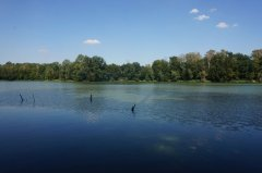 Рыбалка у села Великая Любаша в Ровенской области-1