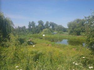 Рыбалка у села Ярославичи  в Ровенской области-1