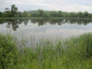 Рыбалка в селе Берестовец в Ровенской области-1