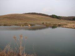 Рыбалка в селе Долгошии Ровенской области-1
