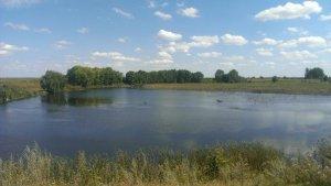 Рыбалка в селе Перевередов в Ровенской области-1
