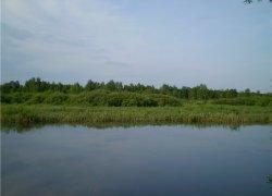 Рыбалка в селе Волошки в Ровенской области-1