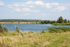 Рыбалка у села Кринички в Ровенской области-1