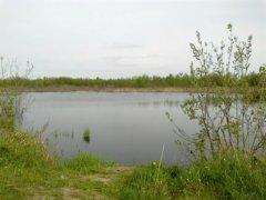 Рыбалка у села Новая Любомирка в Ровенской области-1