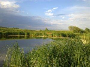Рыбалка у села Пухова в Ровенской области-1