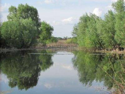 Рыбалка у села Сребное в Черниговской области-1
