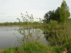 Рыбалка у села Три Копцы в Ровенской области-1