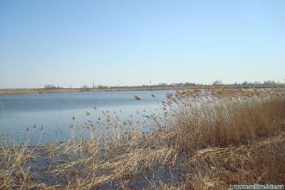 Рыбалка в селе Дубины в Львовской области-1