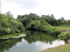 Рыбалка в селе Шубков в Ровенской области-1