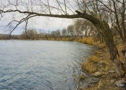 Рыбалка на реке Северский Донец в Донецкой области-1