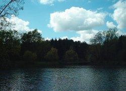 Рыбалка у села Солыги в Львовской области-1