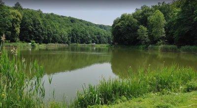 Рыбалка в селе Оброшине в Львовской области-1